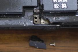 P1060219.JPG