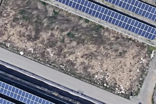 ポイ捨て衛星写真.JPG